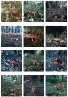 http://www.carolinanitsch.com/files/gimgs/th-118_118_hoeller-carsten-mushrooms.jpg