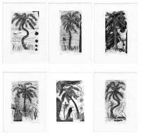 http://www.carolinanitsch.com/files/gimgs/th-125_SMJ-0002-Wild-Palms.jpg