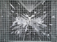 http://www.carolinanitsch.com/files/gimgs/th-21_21_backdetailbest.jpg