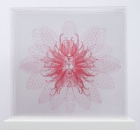 http://www.carolinanitsch.com/files/gimgs/th-21_DAY-0104-Waterlily-Transporter-pink-LoRes-crop.jpg