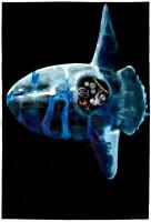 http://www.carolinanitsch.com/files/gimgs/th-291_ROC-0011-Untitled-Mola-Mola_v2.jpg