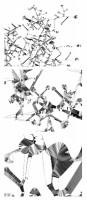 http://www.carolinanitsch.com/files/gimgs/th-43_43_shotz-alyson-3-steps-closer-all-3-drawings.jpg