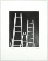 https://www.carolinanitsch.com/files/gimgs/th-12_BOU-0131-The-Ladders.jpg