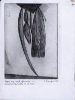 https://www.carolinanitsch.com/files/gimgs/th-12_BOU-0260-Hanging-Weeds-State-V-LoRes.jpg